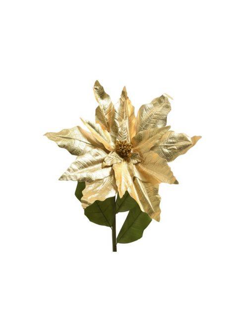 Цветок пуансетии, золотой