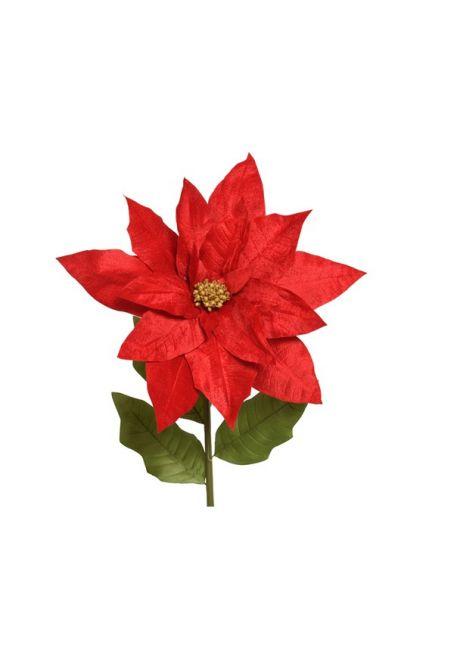 Цветок пуансетии, красный