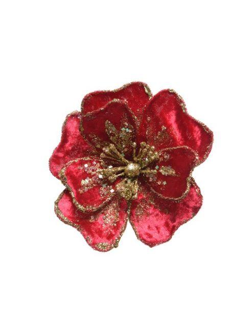Цветок бархатный, красный